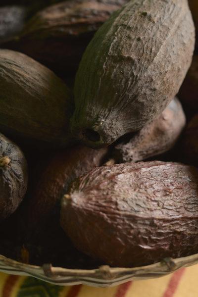 Ajaw maya chocolate tour San Ignacio. Photo: Leonardo Melendez / Sera Images